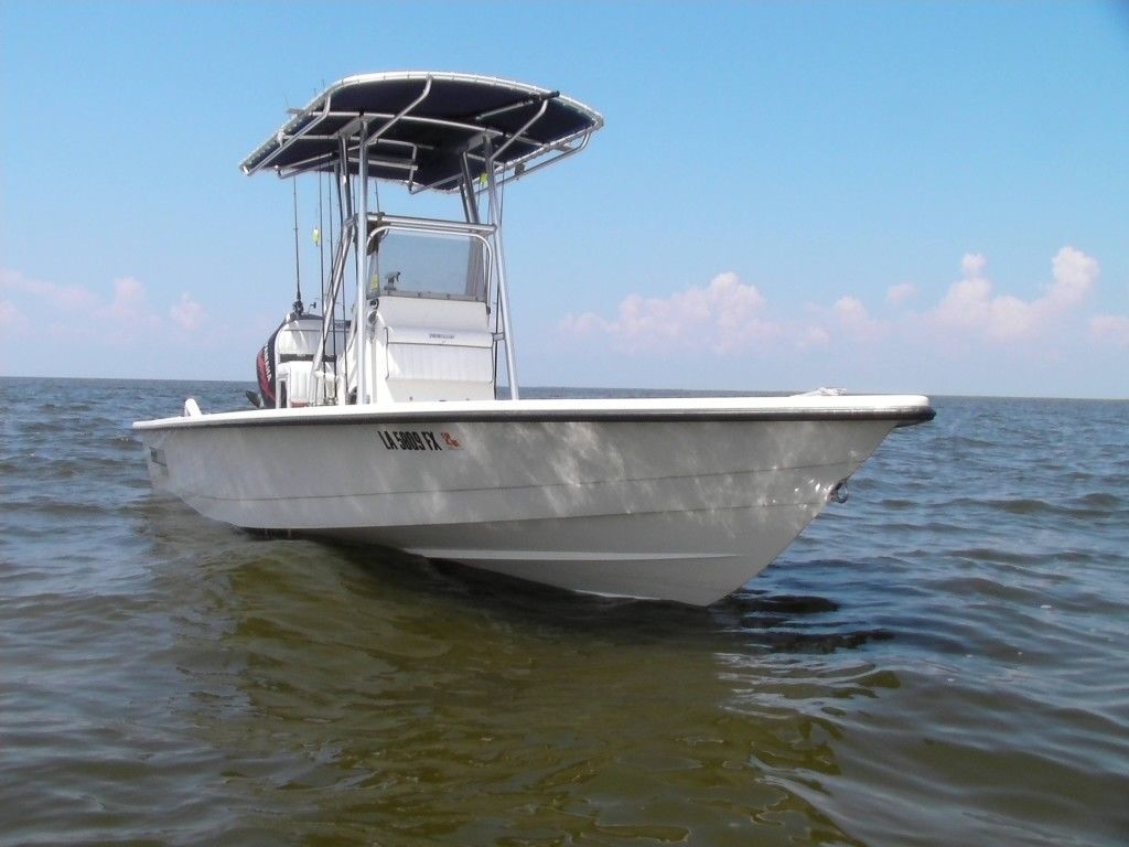 Bay Boat with T-Top