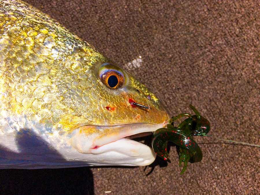 Three Lures Redfish Love And You Don 39 T Use Louisiana