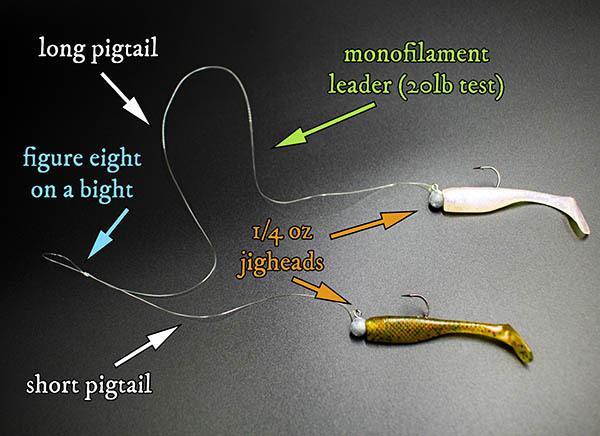 shad rig diagram