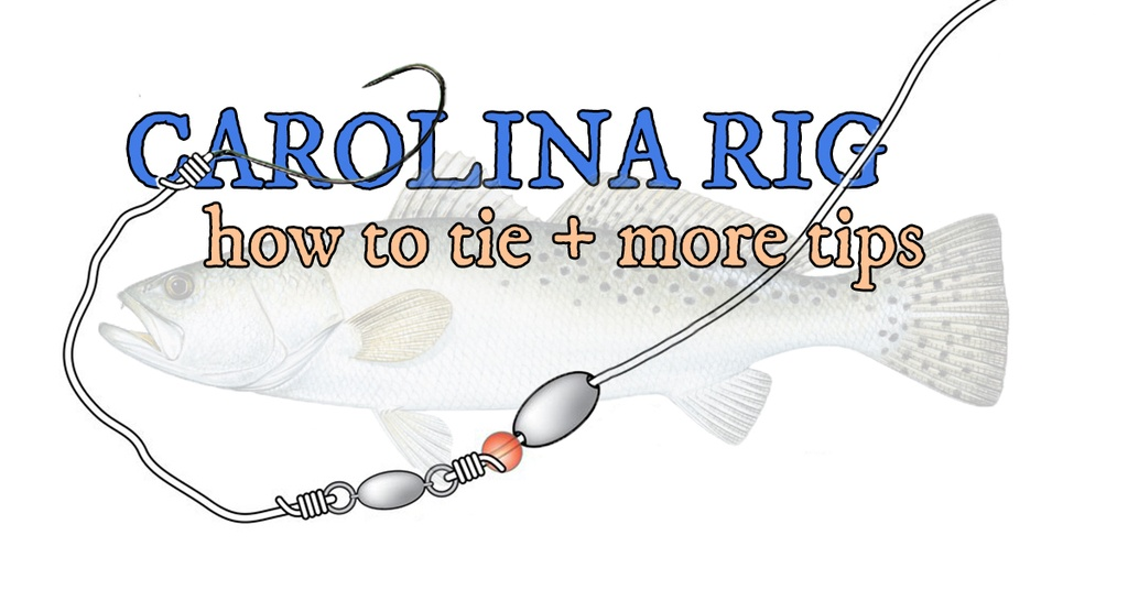 how to tie carolina rig for speckled trout and redfish